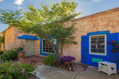 Pima County Single Family Home For Sale: 228 S Country Club Road