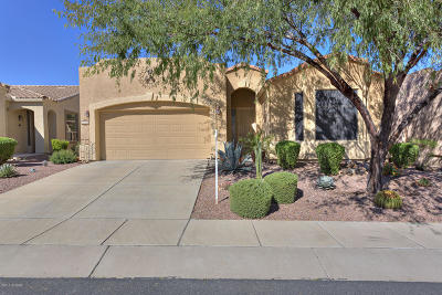 Pima County Single Family Home For Sale: 710 W Shadow Wood Street