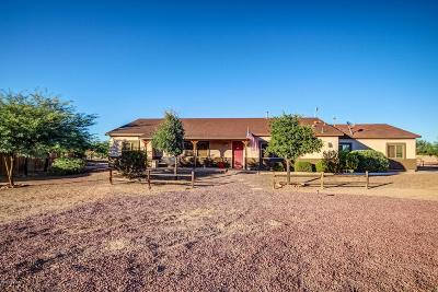 Pima County, Pinal County Single Family Home For Sale: 16504 W Nic Nac Way