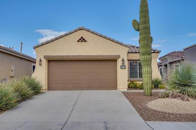 Single Family Home For Sale: 314 W Calle Montero