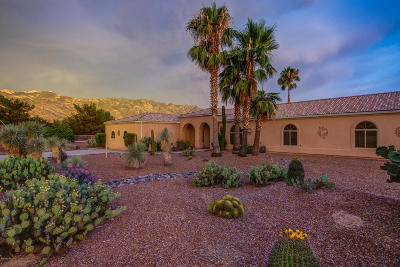 Tucson Single Family Home For Sale: 4072 E Adams Rib Place