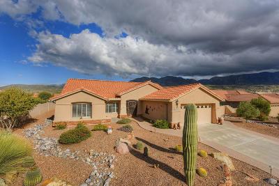 Pima County, Pinal County Single Family Home For Sale: 37315 S Desert Sun Drive