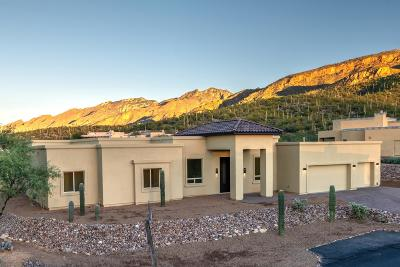 Tucson Single Family Home For Sale: 5387 N Sabino Highlands Place