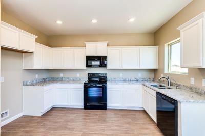 Marana Single Family Home For Sale: 11664 W Fayes Glen Drive