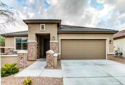 Tucson Single Family Home For Sale: 5870 S Clonmellon Avenue