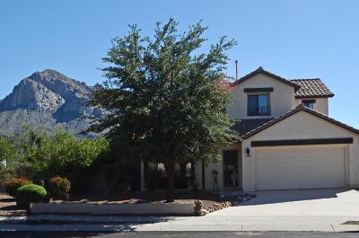 Tucson Single Family Home For Sale: 318 E Shore Cliff Place