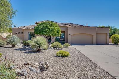 Tucson Single Family Home For Sale: 4310 E Pinnacle Ridge Place
