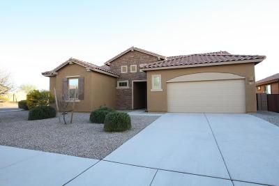 Marana Single Family Home For Sale: 11343 W Smooth Pumice Street
