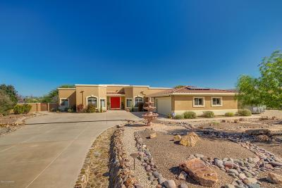 Pima County Single Family Home For Sale: 3941 E Sheldon Place