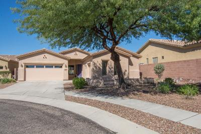 Pima County, Pinal County Single Family Home For Sale: 12841 N Cactus Terrace Place