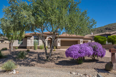 Pima County Single Family Home For Sale: 5784 W Silent Wash Place