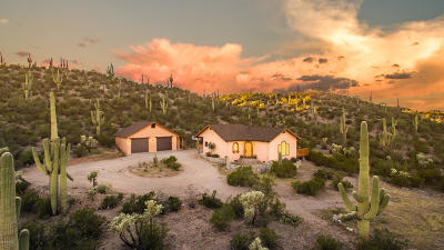 Pima County Single Family Home For Sale: 16755 San Pedro River Road
