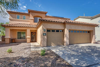 Sahuarita Single Family Home Active Contingent: 232 W Calle Bayeta