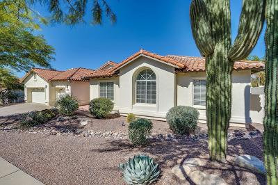 Tucson Single Family Home For Sale: 3623 N Sabino Creek Place