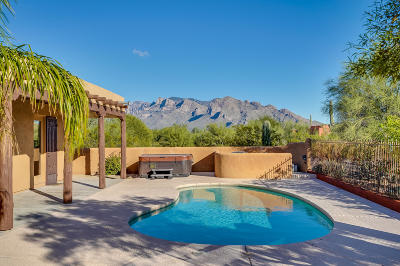 Pima County, Pinal County Single Family Home For Sale: 2425 W Ogle Wash Place