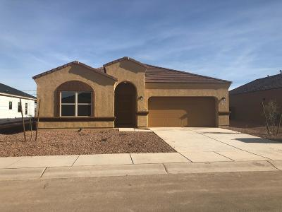 Marana Single Family Home For Sale: 11680 W Fayes Glen Drive