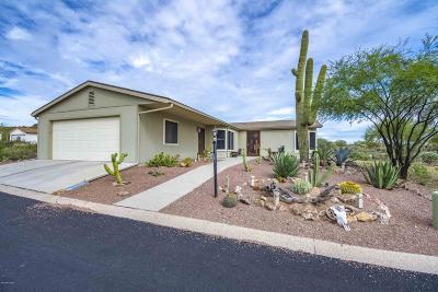 Tucson Single Family Home For Sale: 3373 S Spectrum Avenue