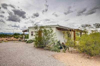 Tucson Single Family Home For Sale: 12419 W Mile Wide Road