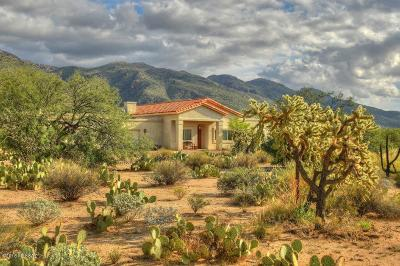 Pima County Single Family Home For Sale: 11015 E Snyder Road