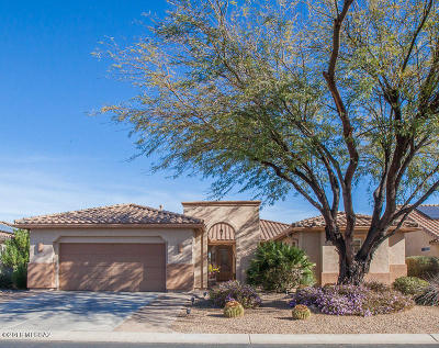 Pima County Single Family Home For Sale: 1865 E Wintergreen Drive