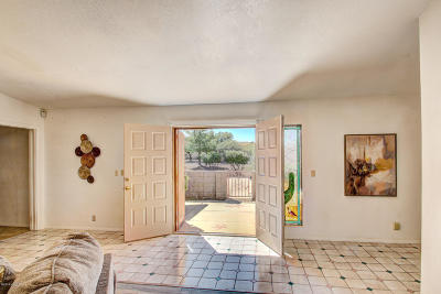 Pima County Single Family Home For Sale: 300 S Melpomene Way