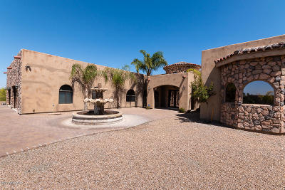 Pima County Single Family Home For Sale: 295 E Rudasill Road