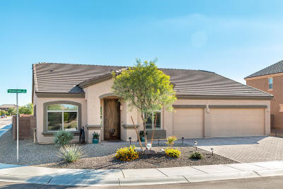 Pima County Single Family Home For Sale: 11045 W Snaketown Street