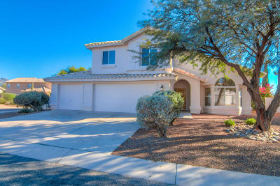 Pima County Single Family Home For Sale: 2069 W Grand Cypress Court
