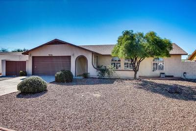 Pima County Single Family Home For Sale: 2329 W Ocelot Drive
