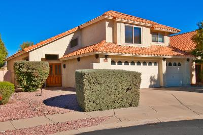 Pima County Single Family Home For Sale: 9489 E Star Water Drive