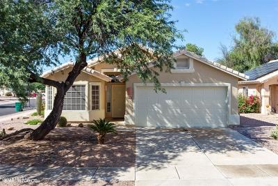 Tucson Single Family Home For Sale: 9097 N Palm Brook Drive
