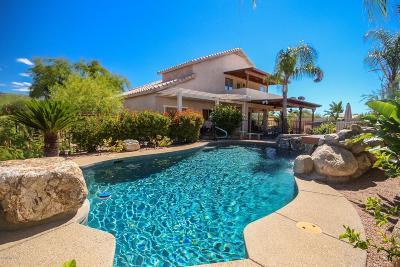 Single Family Home For Sale: 1050 S Desert Senna Loop
