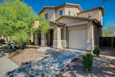 Tucson Single Family Home For Sale: 3358 N Sierra Springs Drive
