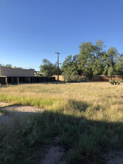 Residential Lots & Land For Sale: 351 E Calle Arizona