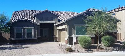 Pima County Single Family Home For Sale: 8808 W Moon Spring Road