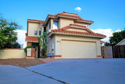 Tucson Single Family Home For Sale: 9524 E Stonehaven Way