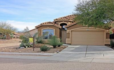 Vail Single Family Home For Sale: 10892 S Arrowhead Spring Drive