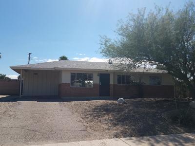 Tucson Single Family Home For Sale: 6350 E Calle Orion