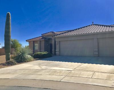 Pima County Single Family Home For Sale: 5285 W Wild Burro Spring Drive