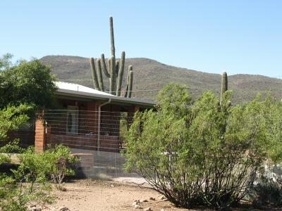 Tucson Single Family Home For Sale: 7619 N Artesiano Road
