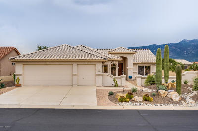 Pima County Single Family Home For Sale: 39847 S Shortcut Avenue