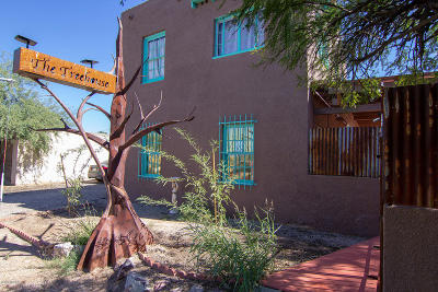 Tucson Single Family Home For Sale: 205 S Park Avenue