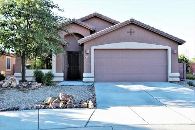 Tucson Single Family Home For Sale: 7154 E Bloomtree Lane