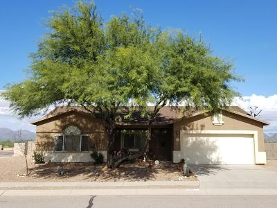 Tucson Single Family Home For Sale: 6313 S Cowpoke Drive