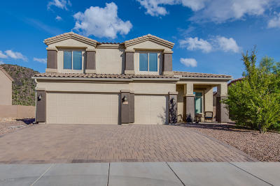 Marana Single Family Home For Sale: 9620 N Saguaro Breeze Way