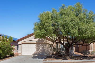 Tucson Single Family Home For Sale: 9135 E Ironbark Street