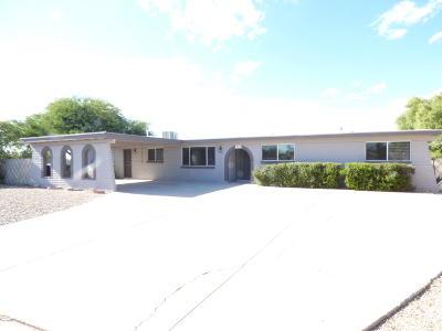 Tucson Single Family Home For Sale: 9605 E Creek Street
