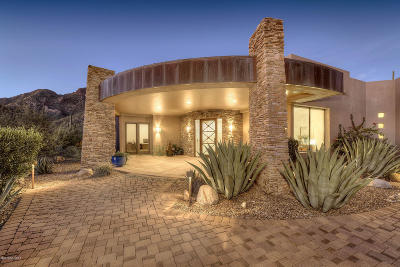 Tucson Single Family Home For Sale: 7815 N Ancient Indian Drive