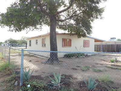 Tucson Single Family Home For Sale: 304 E Roger Road
