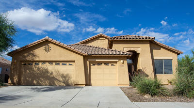 Marana Single Family Home For Sale: 12745 N Satsuma Drive